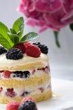 Heerlijk dessert Royalty-vrije Stock Afbeelding