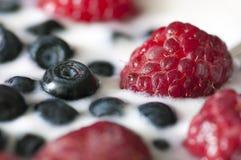 Heerlijk die dessert van yoghurt en rijpe bessen wordt gemaakt Stock Afbeeldingen