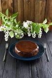 Heerlijk Eigengemaakt dessert De cake van de vogelkers met chocolade icin Stock Fotografie