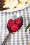 Heerlijk fruit Royalty-vrije Stock Foto's
