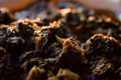 Heerlijk Grieks Spinazie en Vlees Stew During Sunset Stock Foto