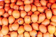 Heerlijk sapodillafruit stock fotografie