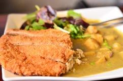Heerlijk veggie vlees met kerrieschotel Stock Fotografie