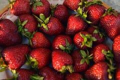 Heerlijke aardbeien royalty-vrije stock fotografie