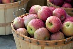 Heerlijke appelen in bushelmanden Stock Afbeelding