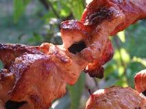 Heerlijke barbecue Stock Foto