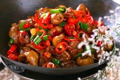 Heerlijke Chinese voedsel gebraden schotel - hete pepersau Royalty-vrije Stock Foto's