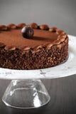 Heerlijke chocoladecake Stock Afbeelding