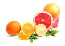Heerlijke citrusvruchten Multi-colored citroenen, grapefruits en sinaasappelen, op een witte achtergrond Verse citrusvruchten Stock Afbeeldingen