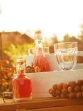 Heerlijke de zomerdranken in een tuin Royalty-vrije Stock Afbeeldingen