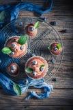 Heerlijke die muffin van chocolade, verse bessen en room wordt gemaakt stock afbeeldingen
