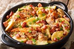 Heerlijke eigengemaakte gebakken kippenfilet met aardappels, bacon en stock foto