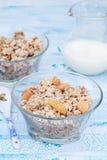 Heerlijke en gezonde granola of muesli met noten en rozijnen Stock Afbeeldingen