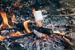 Heerlijke en zoete heemst op stok over het vuur stock afbeelding
