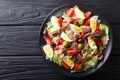 Heerlijke gastronomisch nicoise salade met groenten, eieren, tonijn en stock afbeelding