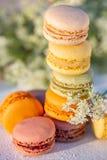 Heerlijke gekleurde Franse gebakjes Dessertsnoepjes macarons en weide witte bloemen stock afbeelding