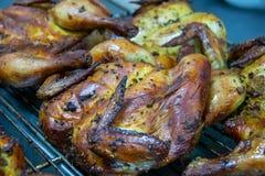 Heerlijke geroosterde kip met kruiden Thais voedsel stock fotografie