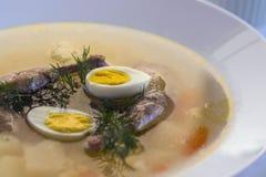 Heerlijke geurige die soep op kwartelsbouillon wordt gebaseerd in een witte het dineren plaat Plakken van vlees, kwartelsei, dill royalty-vrije stock foto