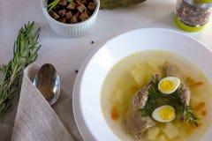 Heerlijke geurige die soep op kwartelsbouillon wordt gebaseerd in een witte het dineren plaat Plakken van vlees, kwartelsei, dill royalty-vrije stock foto's