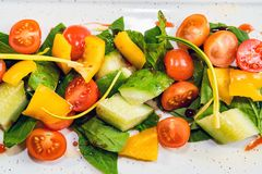 Heerlijke gezonde plantaardige salade op witte plaat stock afbeeldingen