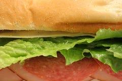 Heerlijke gezonde sandwich upclose royalty-vrije stock fotografie