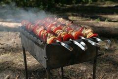 Heerlijke kebab op BBQ stock foto