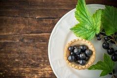 Heerlijke knapperige taartjes met zwarte bessen Stock Fotografie