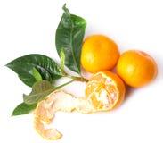 Heerlijke mandarin Stock Afbeeldingen