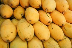Heerlijke mango Stock Foto
