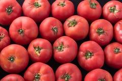 Heerlijke rode tomaten Een stapel van tomaten Van de de marktlandbouw van het de zomerdienblad het landbouwbedrijfhoogtepunt van  Royalty-vrije Stock Foto's