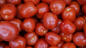 Heerlijke rode tomatenachtergrond Van de de marktlandbouw van het de zomerdienblad het landbouwbedrijfhoogtepunt van organische g royalty-vrije stock afbeeldingen