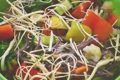 Heerlijke salade Stock Afbeelding
