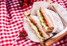 Heerlijke smakelijke saladesandwiches Stock Afbeeldingen