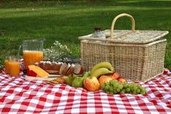 Heerlijke Uitgespreide Picknick Royalty-vrije Stock Afbeeldingen