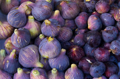 Heerlijke verse fig. Royalty-vrije Stock Fotografie
