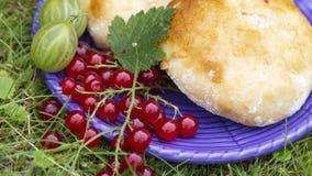 Heerlijke verse kaastaarten en rode aalbessen stock fotografie
