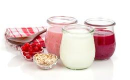 Heerlijke, voedzame en gezonde yoghurt in een glaskruiken Royalty-vrije Stock Afbeeldingen