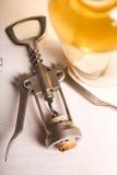 Heerlijke wijn Royalty-vrije Stock Fotografie