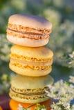 Heerlijke zoete luchtige kleuren Franse gebakjes Dessertsnoepjes macarons stock foto