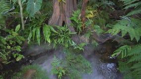 Heet bronwater in de tuin stock videobeelden