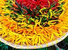 Heet Chili Peppers Royalty-vrije Stock Afbeeldingen