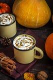Heet Chocolade en Autumn Pumpkins Royalty-vrije Stock Foto's