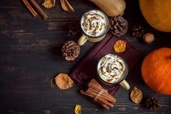 Heet Chocolade en Autumn Pumpkins Royalty-vrije Stock Foto