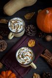 Heet Chocolade en Autumn Pumpkins Royalty-vrije Stock Afbeeldingen