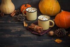 Heet Chocolade en Autumn Pumpkins Stock Fotografie
