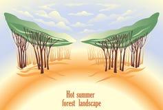 Heet de zomer boslandschap Royalty-vrije Stock Fotografie