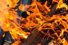 Heet helder de vlammen het van achtergrond vlammen oranje tongen gevaar koken het kamperen close-upontwerp als achtergrond royalty-vrije stock foto