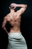 Heet mannelijk model Royalty-vrije Stock Foto