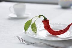 Heet voedsel! Royalty-vrije Stock Afbeelding