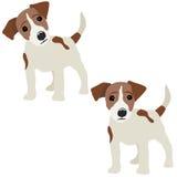Hefboom Russell Terrier royalty-vrije illustratie